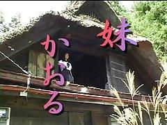 일본 erotica229