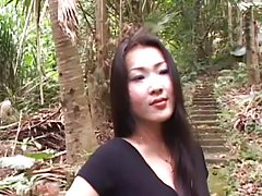 Tao 홍-3-중국,젠장