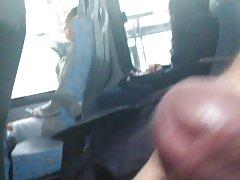 Dick flash 에서 버스